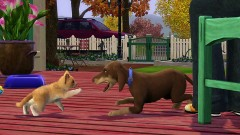 the sim 3 animals.jpg